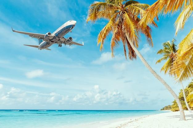 リゾートでの着陸飛行機