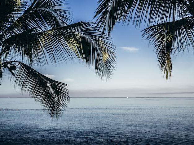 Красивый синий морской пейзаж. природа фон. дизайн путешествий.