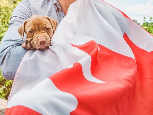 Красивый мужчина с канадским флагом и милый щенок