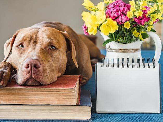 Красивый букет цветов, пустой блокнот и милый щенок
