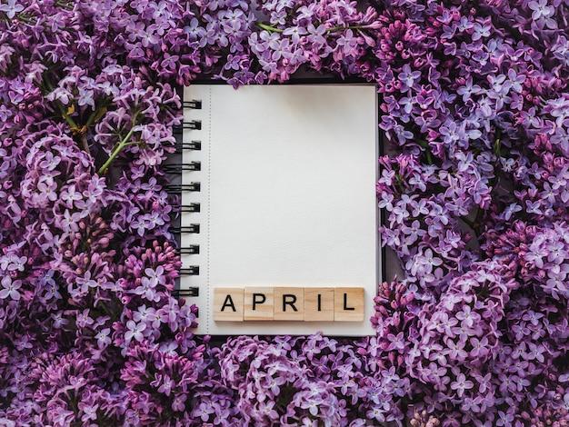 Альбом для рисования, пустая страница и яркие сиреневые цветы