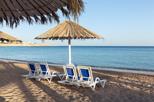 金属パーゴラとプラスチック製のサンラウンジャー付きのヤシの木と砂浜。傘の下のサンラウンジャー