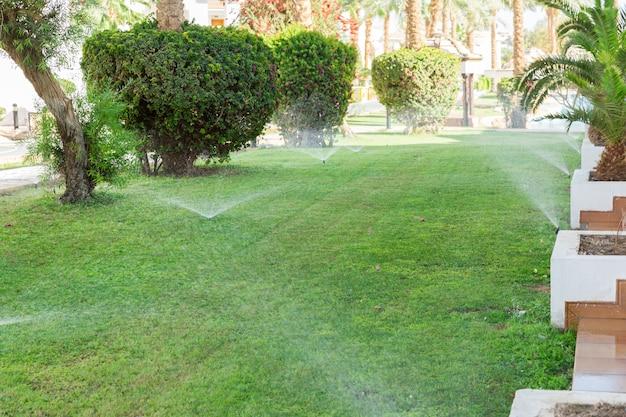 Спринклер в саду поливает газон. концепция автоматического полива газонов