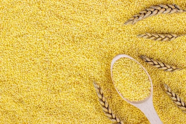 Зерна пшеницы и колоски пшеницы. вид сверху