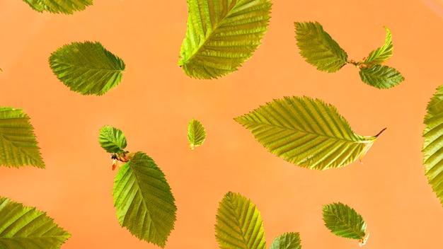 桃のテーブルに明るい緑の葉。