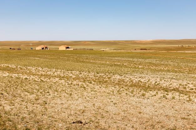 中国内モンゴル自治区、ゴビ砂漠
