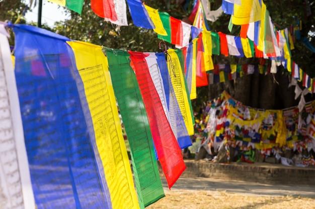 ルンビニ、ネパールの旗を祈る仏教徒