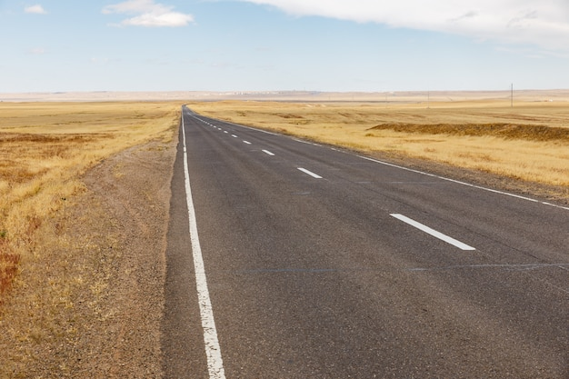 モンゴルのアスファルト道路