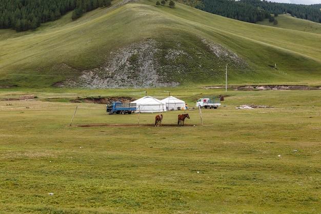 モンゴル遊牧民キャンプ