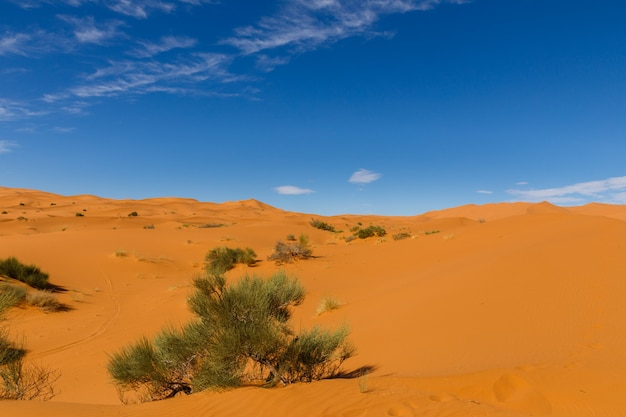 Пустынный ландшафт, марокко.