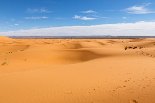 モロッコ、サハラ砂漠の砂丘