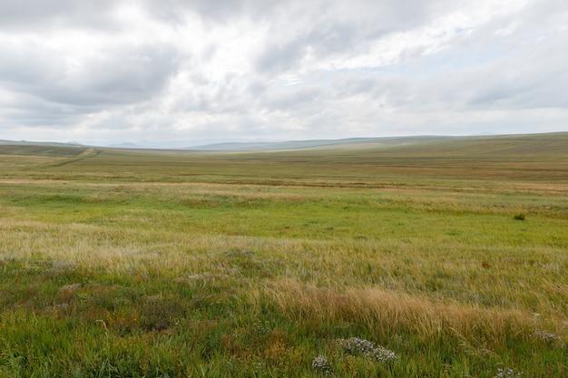 曇り空の背景にモンゴルの草原