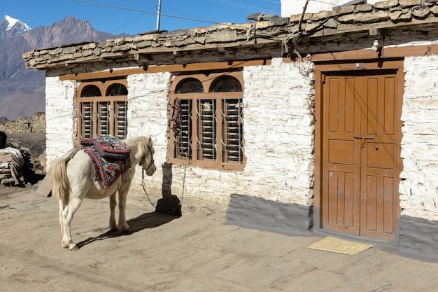 ネパールの家の近くに馬が立っています。