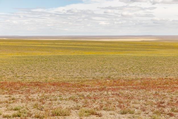 ゴビ砂漠のモンゴルの風景