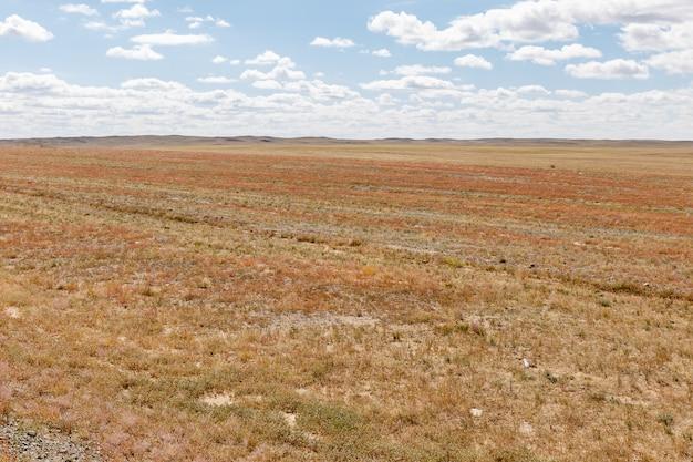 ゴビ砂漠モンゴル