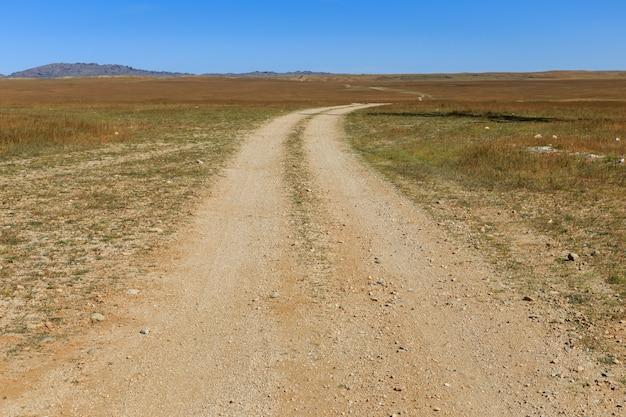 草原、ゴビ砂漠のフィールド道路