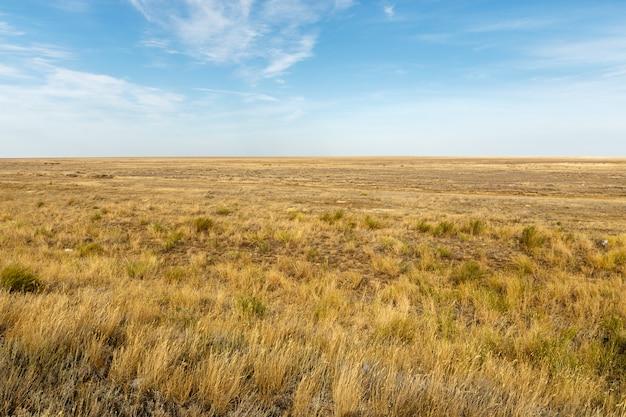 人けのない草原の風景。カザフスタン。