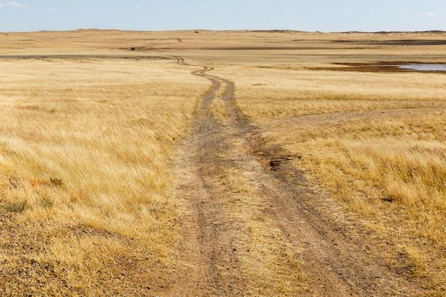 草原、砂漠のゴビの田舎道