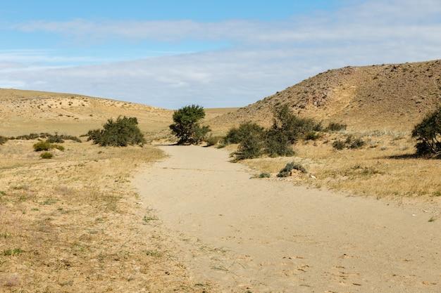砂漠、ゴビ砂漠、モンゴルの乾燥した川のベッド