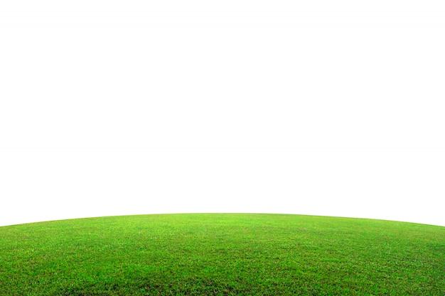 白で隔離される山の上の緑の芝生のフィールド。