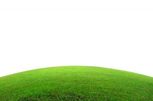 白い背景で隔離の山の上の緑の芝生のフィールド。