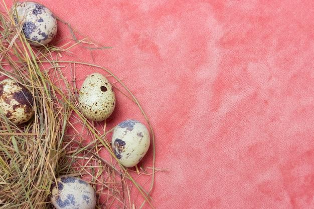 繊細なピンク色の布の背景に干し草とウズラの天然卵。上面図