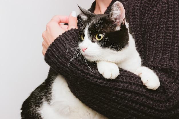 Девушка в теплом свитере держит и обнимает на руках старую милую седовласую кошку. черный и белый цвет.