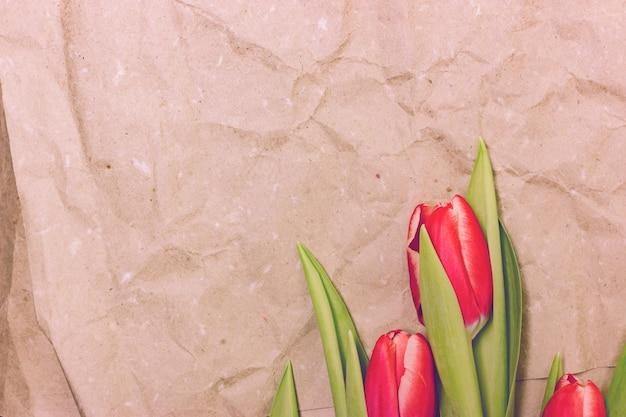 ベージュ色の紙の背景に早いピンクのチューリップ