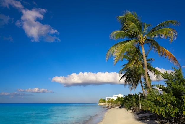 Холбокс остров пальмовый пляж в мексике