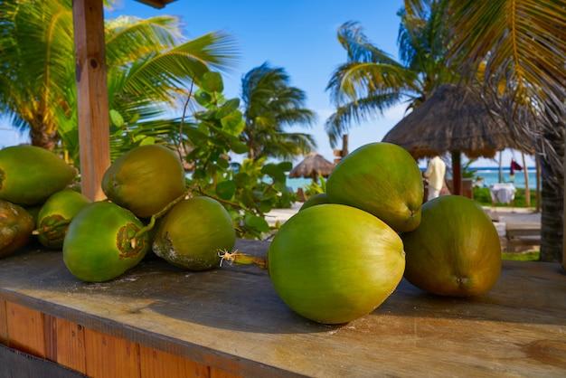 リビエラマヤのカリブ海のココナッツの果実