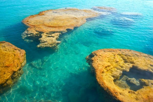 Строматолиты в мексиканском заливе бакалар