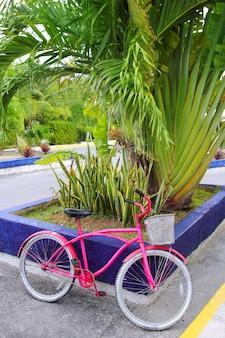 Велосипед розовый в карибской тропической мексике ярких цветов