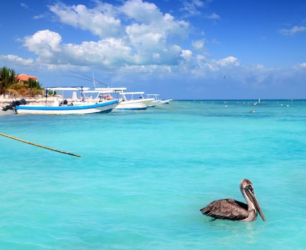 Пляж пуэрто-морелос ривьера майя карибское море