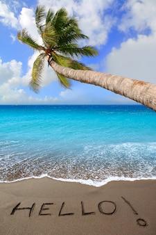 書かれた言葉こんにちはと茶色の砂浜