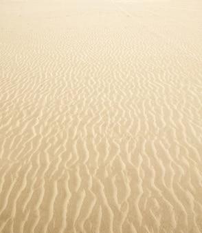 ビーチの砂の波暖かいテクスチャ背景