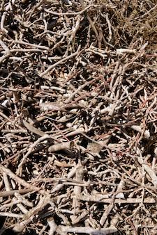 茶色の乾燥積み上げ薪パターン背景