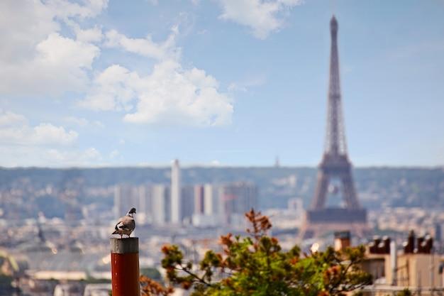 モンマルトルから空撮パリのスカイライン