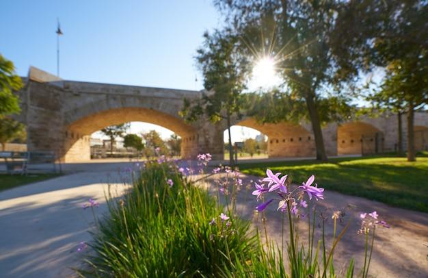 Серрано мост в валенсии в парке турия испания