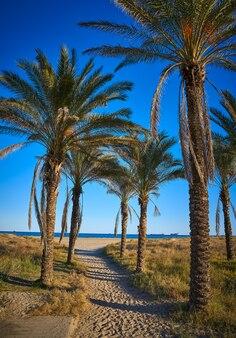 Пляж плайя эль пинар в грао де кастельон