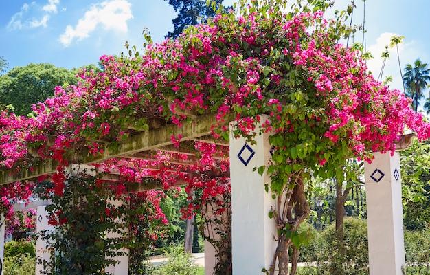 セビリアマリアルイサ公園庭園スペイン