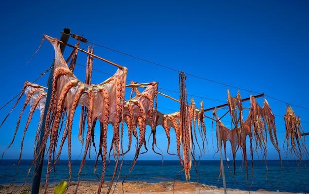 地中海で乾燥した乾燥タコ