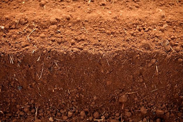 耕土赤土土農業分野