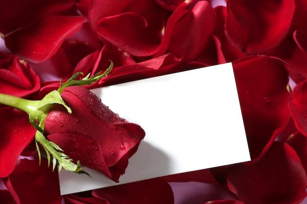 白紙のメモと赤いバラマクロをクローズアップ