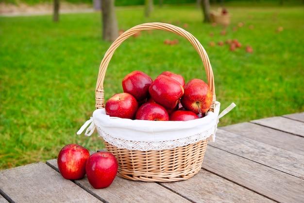 草の木のフィールド上のバスケットにリンゴ