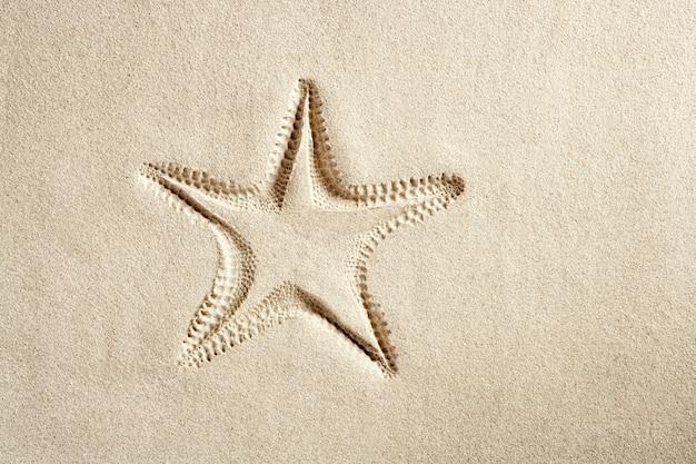 ビーチヒトデプリント白いカリブ海砂夏