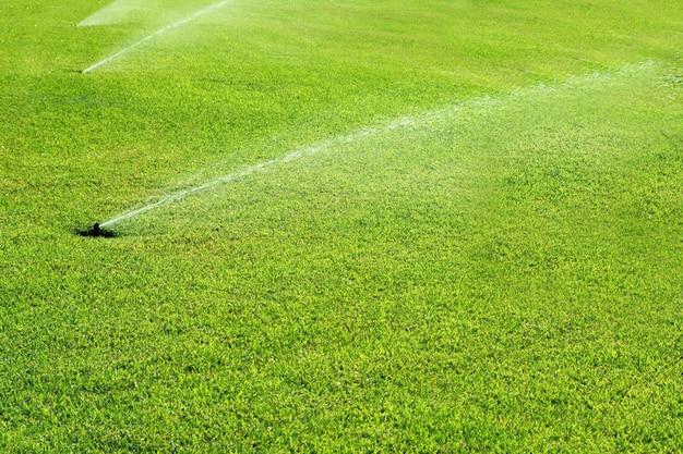 行の芝生の庭の湧水