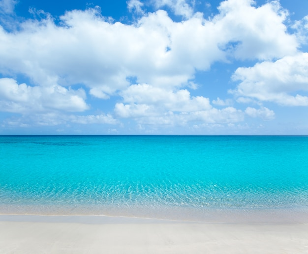 白い砂浜とターコイズブルーの水と熱帯のビーチ