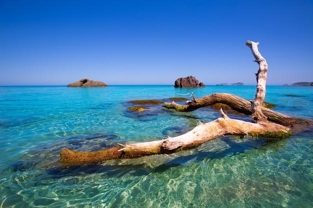 サンタエウラリアでイビサアイグスブランクアグアスブランカスビーチ