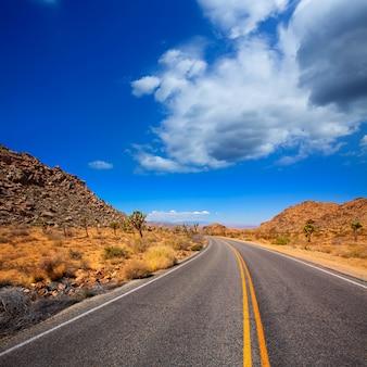 カリフォルニア州ユッカバレー砂漠のジョシュアツリー大通り道路