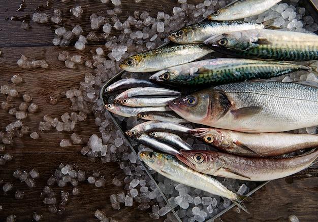 Свежая рыба хек морского окуня сардина скумбрия анчоусы